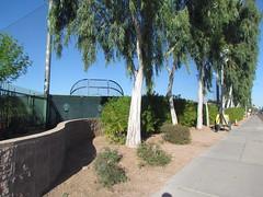 Outisde of Practice Fields at Scottsdale Stadium -- Scottsdale, AZ, March 08, 2016 (baseballoogie) Tags: arizona baseball stadium az giants scottsdale ballpark springtraining sanfranciscogiants cactusleague baseballpark scottsdalestadium 030816 canonpowershotsx30is baseball16
