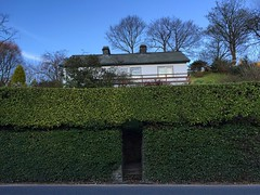 Now, That's A Hedge! (Marc Sayce) Tags: park lake district national hedge cumbria ambleside windermere