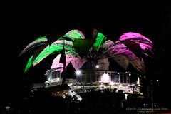 Verde & Magenta (Lex Arias / LeoAr Photography) Tags: lines architecture night lights luces noche arquitectura nikon artistic venezuela nocturna barquisimeto lineas 2016 nikond3100 leoarphotography lexarias iglexariasphotos