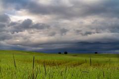 Despus de la tempestad.... (AvideCai) Tags: paisaje cielo nubes tormenta sigma1020 avidecai