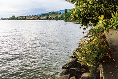 Lac Leman # Montreux # Schweiz # 1991023 # Minox ML Agfa XRG100 - 1991 (irisisopen f/8light) Tags: color film analog dia 100 agfa ml farbe minox colorslide diafilm xrg irisisopen