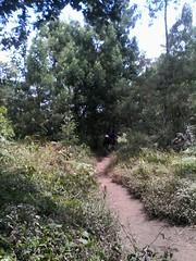 "Pengembaraan Sakuntala ank 26 Merbabu & Merapi 2014 • <a style=""font-size:0.8em;"" href=""http://www.flickr.com/photos/24767572@N00/27067939752/"" target=""_blank"">View on Flickr</a>"