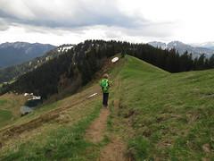 On the ridge (aniko e) Tags: mountains germany walking bayern bavaria spring outdoor hiking peak ridge summit wandern spitzingsee roskopf bayerischevoralpen bavarianprealps