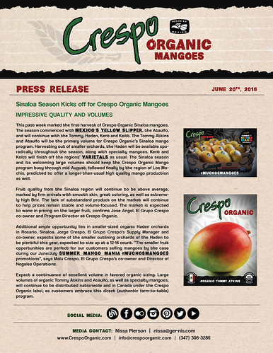 "Crespo Organic Mangoes - Sinaloa Season • <a style=""font-size:0.8em;"" href=""http://www.flickr.com/photos/139081453@N03/27213823833/"" target=""_blank"">View on Flickr</a>"