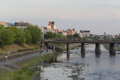 Kyoto City Walk (caz76KOBE) Tags: city trip travel japan canon landscape eos landscapes kyoto   kamogawa cityview 6d  kyotocity  ef100mm eos6d ef100mmf28l ef100mmf28lmacroisusm