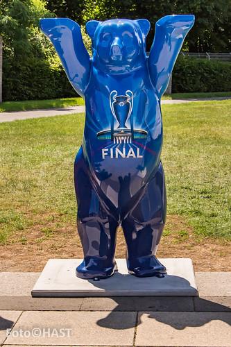 Mascoote van de Champship finale