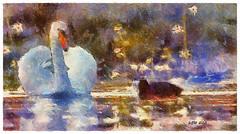 Swan Lake in Spring - Lago de los Cisnes en Primavera (Leo Bar) Tags: cisne swan coot focha painting lake spring primavera colorful texture textura netartii composite leobar awardtree