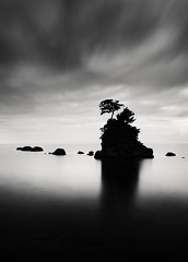 A Dream within a Dream (hiromichiendo) Tags: longexposure blackandwhite bw seascape abstract tree art nature water monochrome japan landscape still rocks fineart silence zen nd minimalism tranquil