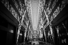 Allen Lambert Galleria (Molinary) Tags: travel urban toronto canada building bceplace galleria santiagocalatrava rachid hockeyhalloffame molinary allenlambertgalleria rachidmolinary