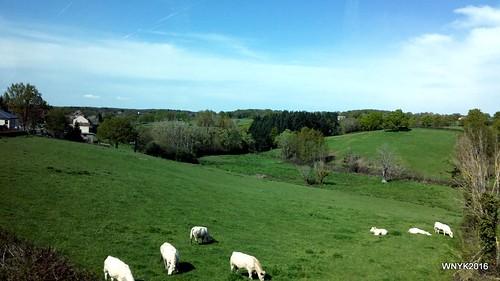 Farm & Fields