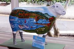 Terrance Baa (Cumberland Patriot) Tags: sheep painted go cumbria trust baa terrance calvert ewe cumbrian herdwick goherdwick