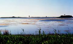 gordens pond / mamiya m645 (bluebird87) Tags: mamiya pond kodak cape epson delaware v600 henlopen ektar c41 m645 gordens dx0