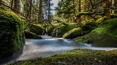 Creek Kamp- Hllfall (Austria) (FotografieTrippolt) Tags: travel green water forest canon austria exposure sigma filter longe