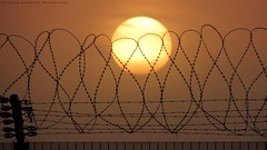The captive sun! (khalid almasoud) Tags: sunset sun canon fence scenery all photographer  powershot wires rights kuwait captive barbed khalid reserved hs    photographyrocks sx40 almasoud flickraward    sx40hs canonsx40hs canonsx40