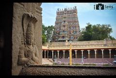 Madurai - Meenakshi Amman temple Pillar