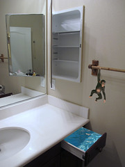 Catch Photo #18 1B (gaymay) Tags: california gay water minnesota bathroom monkey mirror sink drawer iloveyou medicinecabinet