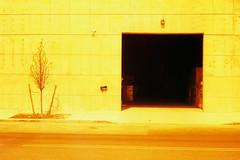 (daveknapik) Tags: film yellow 35mm industrial doors rangefinder canonet bushwick canonetgiiiql17 redscale redscalexr redscalexr50200
