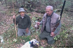 """Woodcock Hunting / Caza de la Becada • <a style=""""font-size:0.8em;"""" href=""""https://www.flickr.com/photos/61427906@N06/7023353843/"""" target=""""_blank"""">View on Flickr</a>"""