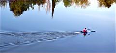 Ondas (Єstєlα Mαrtínєz) Tags: water agua eau canoe zaragoza ebro acqua picnik canoa saragosse piragua canoë saragozza