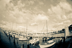 Evans.jpg (frommyangle.L) Tags: bw boat fisheye markii zenita russianmade 5d2 evansparade