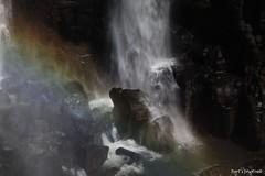Cataratas do Iguau - Iguazu Falls (Bert'sPhotos) Tags: parque brazil naturaleza nature water rio gua brasil arcoiris waterfall rainbow place natureza falls cataratas quedas nacional foz iguassu iguau iguazufalls cataratasdoiguau setemaravilhasdanatureza