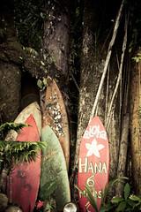 Cruzin' the Road to Hana (abneysc) Tags: vacation island hawaii maui hana surfboard hi aloha roadtohana