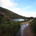 Wet Bay Lough Entrance