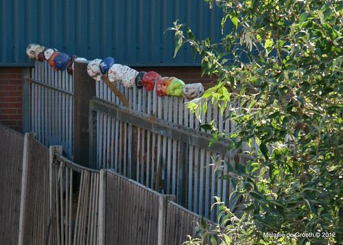 Footballs on the Fence