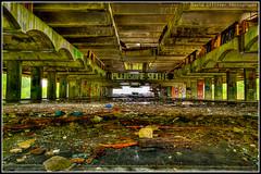 Forgotten (Pikebubbles) Tags: history empty forgotten deserted remnants cardross stpetersseminary davidgilliver