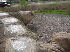 A SENSE OF SIZE ALONG CAYUGA INLET.... AND TO SHOW THE DESIGNS (Birder23) Tags: foot head turtle awesome views greenery paths route89 ithacany childrensplayarea cayugainlet