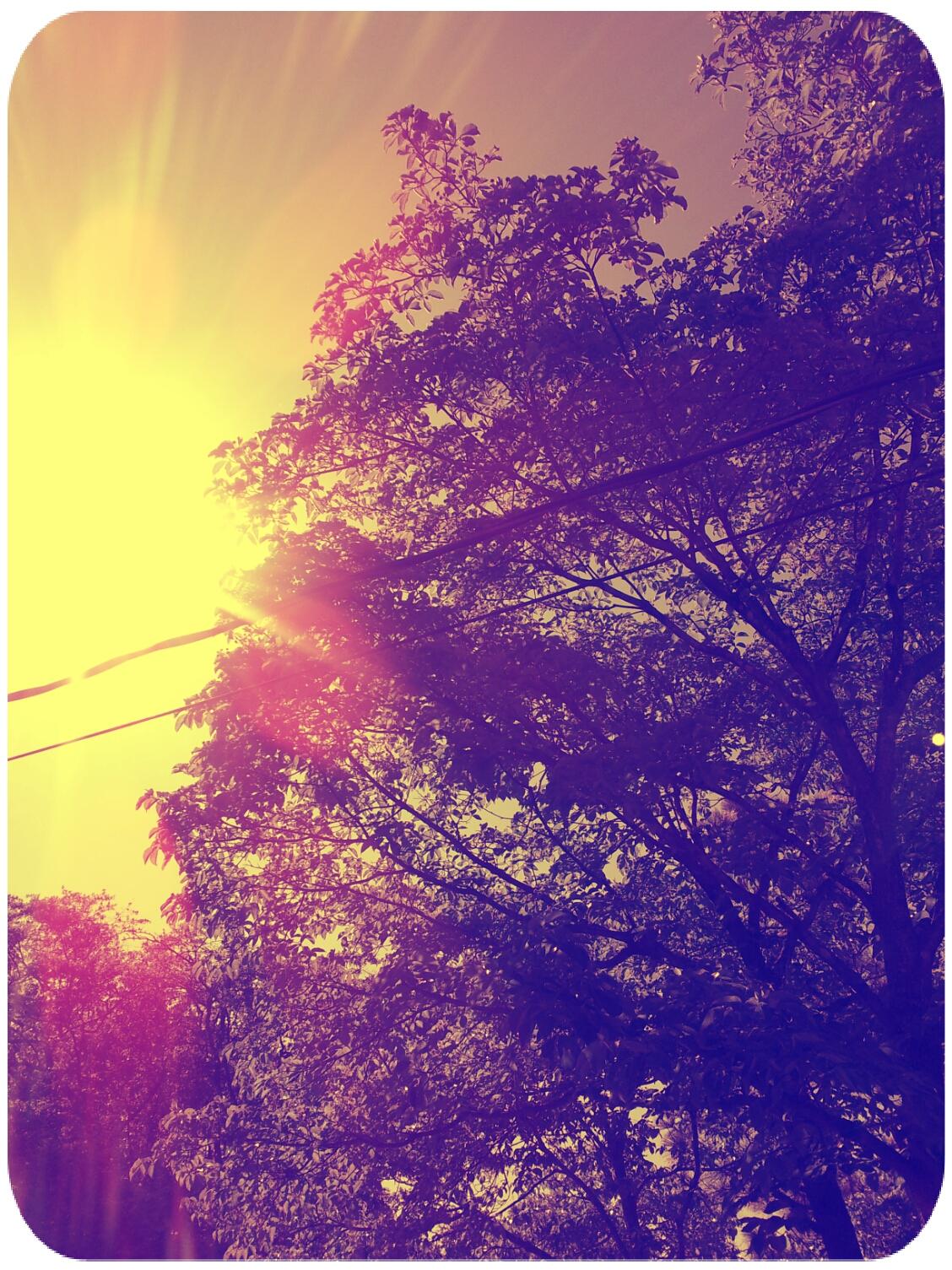 2012-04-11 16.21.41_Amber_Round.jpg