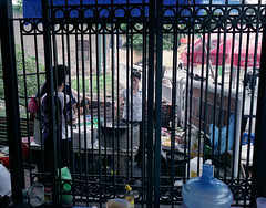 VN-0036-19 (Blagotebi) Tags: vietnam hanoi mamiya7