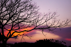 Sunset (*EarvinPaul) Tags: sunset silhouette singapore silhouettes 18 85