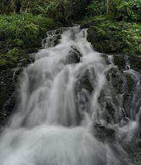 Ro Cabra (Ahio) Tags: green water moss rivers streams llanes sierradelcuera smcpentaxfa31mmf18allimited laborbolla vertorama pentaxk5 rocabra