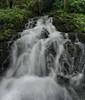 Río Cabra (Ahio) Tags: green water moss rivers streams llanes sierradelcuera smcpentaxfa31mmf18allimited laborbolla vertorama pentaxk5 ríocabra