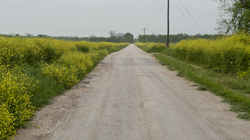 Texas Road Trip 2012