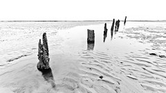 Winchelsea (DanRSmith) Tags: ocean sea bw beach contrast sussex sand highkey posts groyne winchelsea