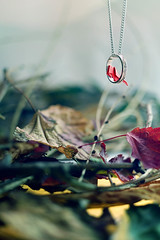 Gold cage dreamer (Dina Belenko) Tags: autumn red pet bird leaves origami parrot cage jewelry ring ornaments jungle perch khabarovsk bijouterie origamibird