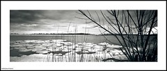 The east channel (DelioTO) Tags: city winter lake toronto ontario canada landscape march blackwhite trails panoramic schneider 6x17 acros100 superangulon autaut ro9 1890mm withlens