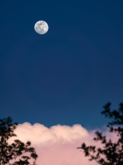 Pretty moon tonight (Ed Rosack) Tags: sky usa cloud moon florida cloudy clear astronomy centralflorida edrosack