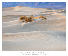 Evening Dunes and Mountains (G Dan Mitchell) Tags: california park light usa mountains nature america landscape evening sand soft desert dunes north national mesquite deathvalley arid