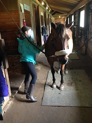 My cousin the cowgirl! (sdanbewa) Tags: horse cute boots cousin cowgirl cowgirlboots