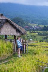 sawah 16 (Fakhri Anindita) Tags: bali nature field indonesia landscape photography nikon farm ubud sawah jatiluwih