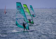 Windsurfers racing in Viken (frankmh) Tags: sport sweden outdoor windsurfing windsurfer viken resund yahoopictureswatersurfing