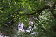 (jeiline) Tags: longexposure lake fall nature oregon lacamas longexposition lacamaspark