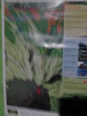 "Pengembaraan Sakuntala ank 26 Merbabu & Merapi 2014 • <a style=""font-size:0.8em;"" href=""http://www.flickr.com/photos/24767572@N00/27094495161/"" target=""_blank"">View on Flickr</a>"