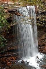 Cucumber Falls, OhioPyle (carolynthepilot) Tags: life trip travel trees mike nature water beautiful weather wonderful michael interesting woods photographer photoshoot pennsylvania getaway live postcard cucumber ngc falls explore pa waterfalls tropical waters wilderness tranquil touring ohiopyle nationalgeographic waterscape stateparks silkstockings goldenwings worldtraveler worldtraveller nationalgeo nationalgeographicphoto nationalgeographicexplorer carolynbistline carolynthepilot flickrhivemindnet flickrmindset