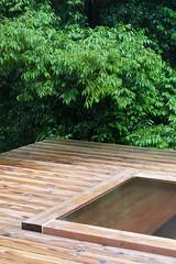 a hot spring bathtub in the wood (YUICHI38) Tags: hotspring okutakeo green bathtub