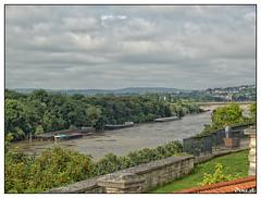 La Seine depuis le parc du Prieur - CONFLANS-SAINTE-HONORINE (baladeson) Tags: france riverseine laseine yvelines conflanssaintehonorine parcduprieur