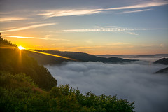 that epic Moment (Moritz Padberg) Tags: fog sunrise nebel sonne sonnenaufgang saarschleife